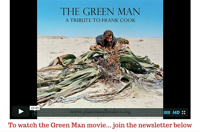 watch-green-man-movie