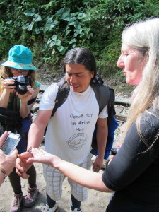Wither with glasswing butterfly and tour participants